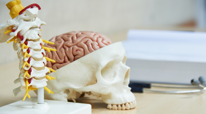 Rochester Brain and Spine – Rochester Brain and Spine